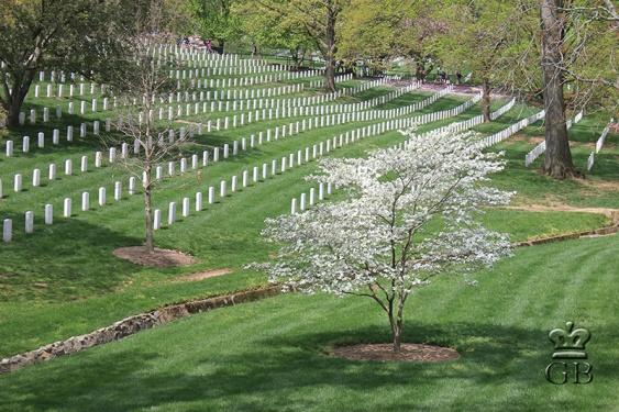 Арлингтон. Мемориальное кладбище (VA)